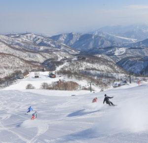 かぐらスキー場 オープンします!